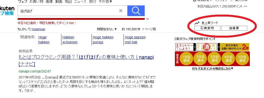 楽天ウェブ検索の図